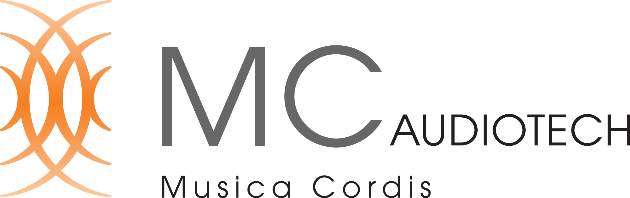 MC AUDIOTECH LLC